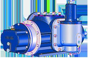 Custom Screw Pump